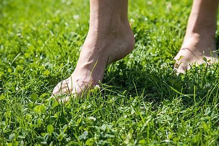 Gras ist ein perfekter Untergrund für die ersten Barfuß-Gehversuche. Foto: Christin Klose/dpa-tmn