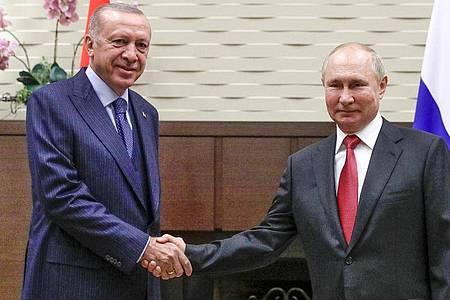 Wladimir Putin (r), Präsident von Russland, und Recep Tayyip Erdogan, Präsident der Türkei, schütteln sich während ihres Treffens in der russischen Staatsresidenz Bocharov Ruchey die Hände. Foto: Vladimir Smirnov/Pool Sputnik Kremlin/AP/dpa