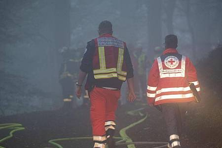 Einsatzkräfte in einem Wald bei Itterbach im Siebengebirge. Laut Polizei starben dort bei dem Absturz eines Kleinflugzeugs zwei Menschen. Foto: Thomas Banneyer/dpa