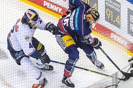 Die Eisbären Berlin mussten zum DEL-Auftakt eine Heimpleite gegen München hinnehmen. Foto: Andreas Gora/dpa