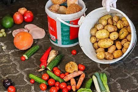 Eine Frau zeigt noch genießbare Lebensmittel aus so genannten Biotonnen. Foto: Jan Woitas/dpa-Zentralbild/dpa/Archivbild