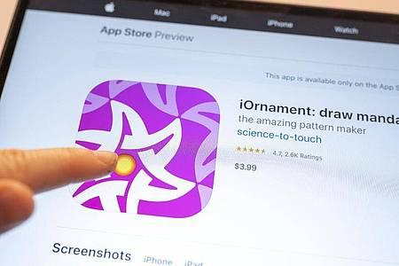 Mit der kostenpflichtigen App «iOrnament» lassen sich Kunst und Mathe verbinden. Foto: Florian Schuh/dpa-tmn