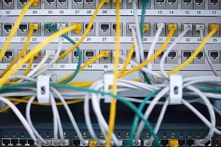 Noch halten die Netze der Telekom-Betreiber in Deutschland dem Ansturm stand. Foto: Jens Büttner/dpa-Zentralbild/dpa