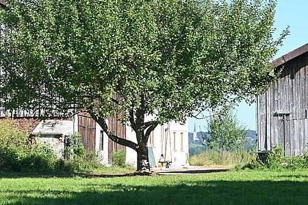 Hof am Ortsrand, auf dem nach Angaben der Behörden eine nicht genehmigte Schule untergebracht war. Foto: Peter Kneffel/dpa