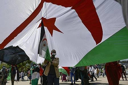 Ein saharischer Demonstrant hält eine Fahne der Republik Sahara. Symbolbild. Foto: Alvaro Barrientos/AP/dpa