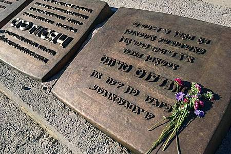 """Blumen liegen vor einem Denkmal für die während der deutschen Besatzungszeit 1941-1943 in Babyn Jar (""""Weiberschlucht"""") erschossenen Bürger der Stadt Kiew und Kriegsgefangenen. Foto: picture alliance / dpa"""