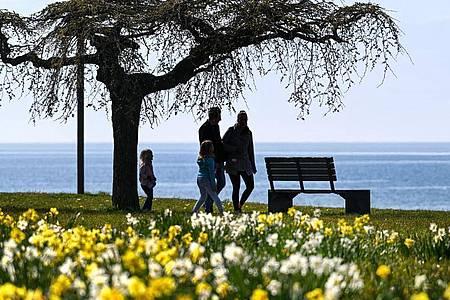 Eine Familie läuft in Langenargen an der Promenade am Bodensee entlang. Foto: Felix Kästle/dpa