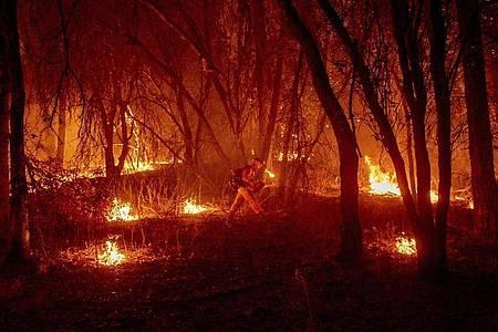 Ein Feuerwehrmann versucht, ein Feuer einzudämmen. Foto: Ethan Swope/AP/dpa