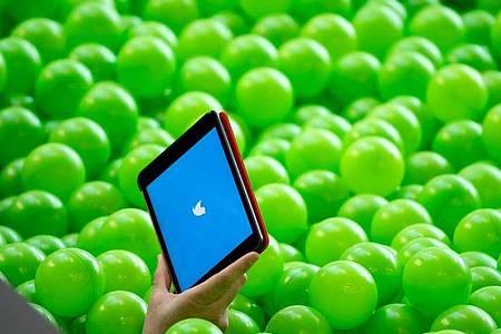 Der Zutritt zu Twitters Info-Bällebad wird künftig nicht mehr bei jedem Account vollständig gratis sein. Foto: Bernd von Jutrczenka/dpa/dpa-tmn