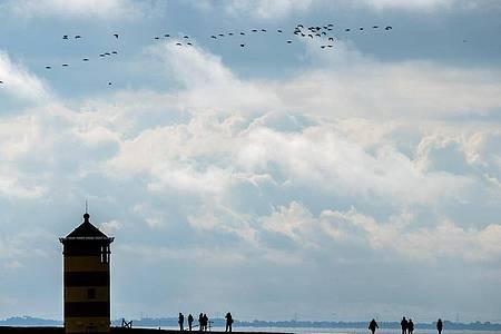 Gänse fliegen über den Pilsumer Leuchtturm. Foto: Sina Schuldt/dpa
