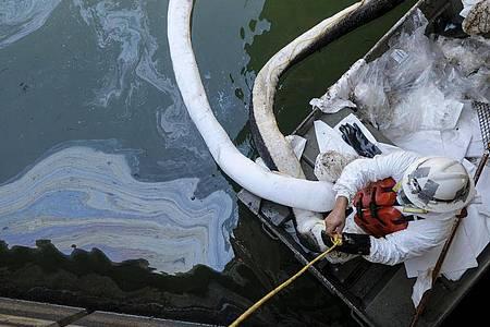 Arbeiter im Schutzanzug im Einsatz. Foto: Ringo H.W. Chiu/AP/dpa