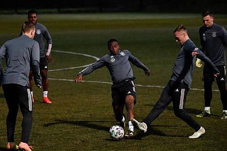 Youssoufa Moukoko (M.) traf doppelt für die deutsche U21-Nationalmannschaft. Foto: Marton Monus/dpa