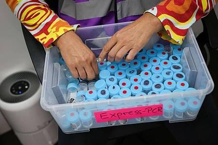 Eine Mitarbeiterin sortiert noch unbenutzte Behälter für einen PCR-Gurgeltest in einem Testcenter für Corona-Schnelltests (Antigentest) und Corona-PCR-Tests. Foto: Christian Charisius/dpa
