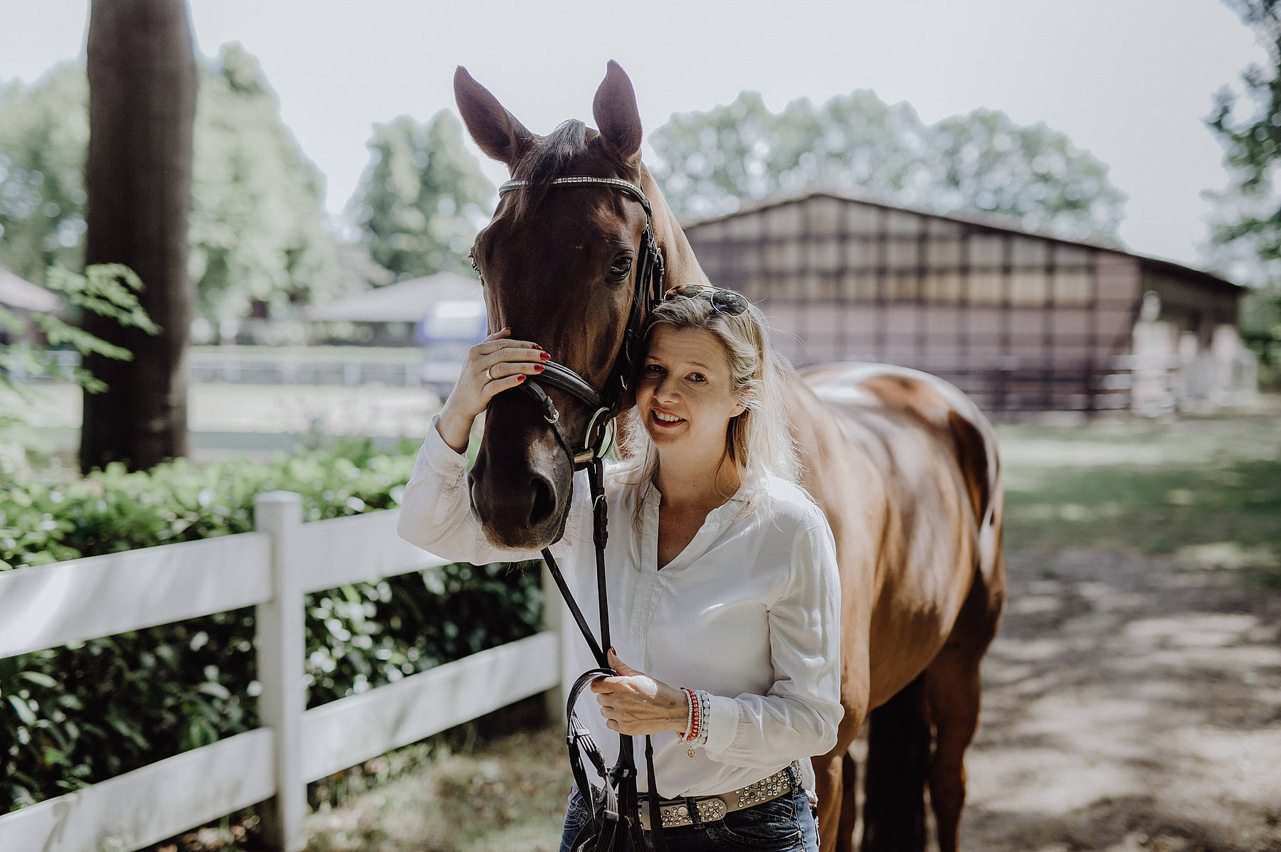 Pferdeverstand